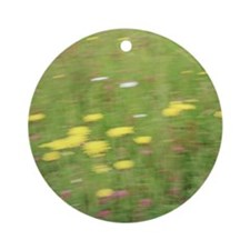 Meadow flowers Round Ornament