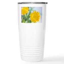 Marigold flowers Travel Mug