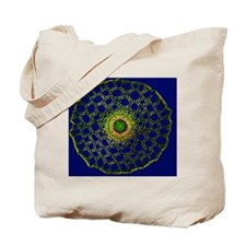Mare's tail stem, light micrograph Tote Bag