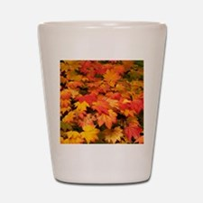 Maple (Acer japonicum vitifolia) leaves Shot Glass