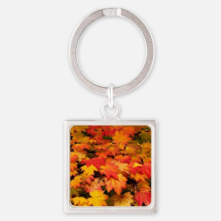 Maple (Acer japonicum vitifolia) l Square Keychain