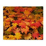 Autumn Fleece Blankets