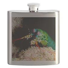Mantis shrimp Flask