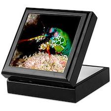 Mantis shrimp Keepsake Box