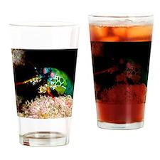 Mantis shrimp Drinking Glass