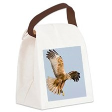 Marsh harrier hunting Canvas Lunch Bag