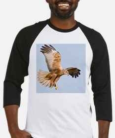 Marsh harrier hunting Baseball Jersey