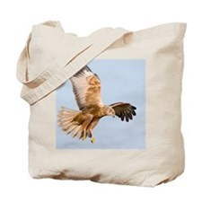 Marsh harrier hunting Tote Bag