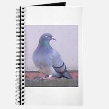 Random Pigeon Journal