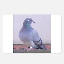 Random Pigeon Postcards (Package of 8)