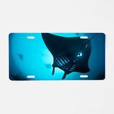 Manta rays Aluminum License Plate