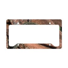 Male sand lizard License Plate Holder