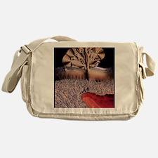 Male sex hormone Messenger Bag
