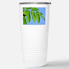Manchurian ash leaves Travel Mug