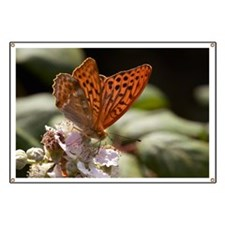 Male Silver-washed Fritillary Butterfly Banner
