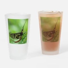 Male mayfly Drinking Glass
