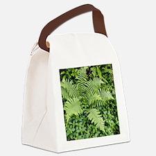 Male fern (Dryopteris filix-mas) Canvas Lunch Bag