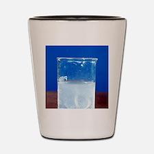 Magnesium reacting with acid Shot Glass