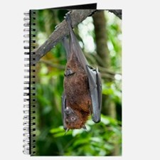 Malayan Flying Fox Journal