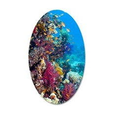 Lyretail anthias and soft co 35x21 Oval Wall Decal
