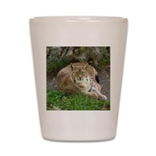 Lynx Shot Glass