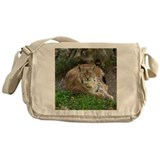 Lynx Messenger Bag
