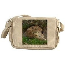 Lynx Messenger Bag