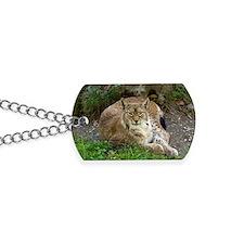 Lynx Dog Tags