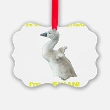 Not such an ugly duckling Ornament