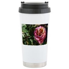 American Beauty Pink Rose Travel Mug