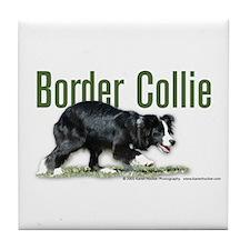 Creeping Border Collie Tile Coaster