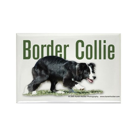 Creeping Border Collie Rectangle Magnet