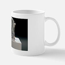 Lunar meteorite Mug