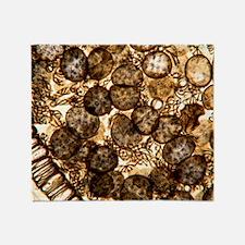 Liverwort spores, light micrograph Throw Blanket