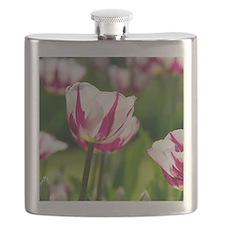 Fragile tulip Flask