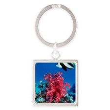 Longfin bannerfish and soft corals Square Keychain