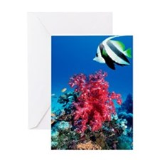 Longfin bannerfish and soft corals Greeting Card
