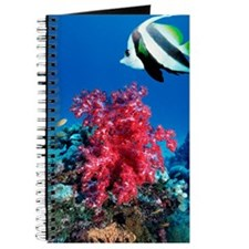 Longfin bannerfish and soft corals Journal