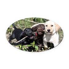 Eromit- Lab puppies Oval Car Magnet