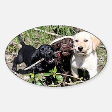 Eromit- Lab puppies Decal