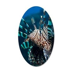 Lionfish 35x21 Oval Wall Decal