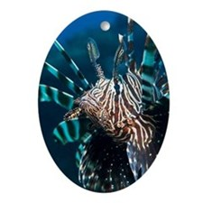 Lionfish Oval Ornament