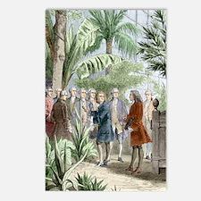 Linnaeus and de Jussieu,  Postcards (Package of 8)