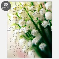 Lily of the valley (Convallaria majalis) Puzzle