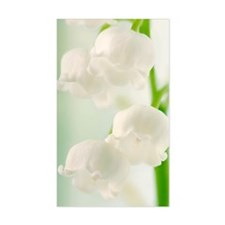 Lily of the valley (Convallari Decal