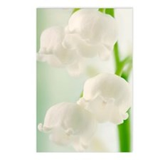 Lily of the valley (Conva Postcards (Package of 8)