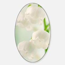 Lily of the valley (Convallaria maj Decal