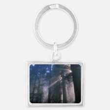 Light coming through redwood tr Landscape Keychain