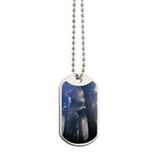 Light coming through redwood trees Dog Tags