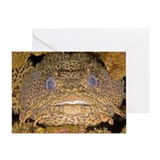 Leopard toadfish Greeting Card